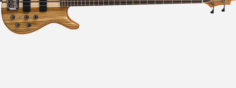 Cort A4-Custom Z گیتار بیس