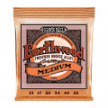 قیمت خرید فروش سیم گیتار ارنیبال Ernie Ball 2144 Earthwood Medium Phosphor Bronze Acoustic Strings