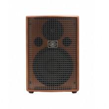 قیمت خرید فروش آمپلی فایر گیتار شرتلر Schertler Jam 150 Wood