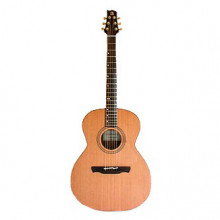 قیمت خرید فروش گیتار آکوستیک الحمرا Alhambra A-1