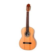 قیمت خرید فروش گیتار کلاسیک هافنر Hofner HC504