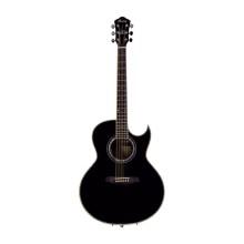 قیمت خرید فروش گیتار آکوستیک آیبانز IBANEZ JSA10 BK With Hard Case