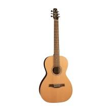 قیمت خرید فروش گیتار آکوستیک سیگال Seagull Coastline Cedar Grand