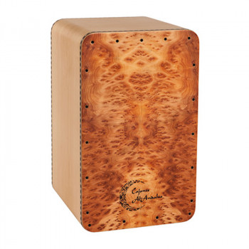 کاخن ال اندلس AL-Andalus Luthier