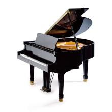 قیمت خرید فروش پیانو آکوستیک پتروف Petrof P 159 Bora Black High polish