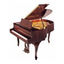 قیمت خرید فروش پیانو آکوستیک پتروف Petrof P 173 Breeze D1