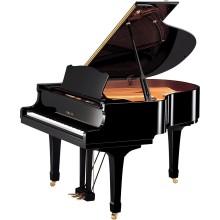 قیمت خرید فروش پیانو آکوستیک یاماها Yamaha C1 PE