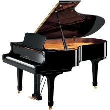 قیمت خرید فروش پیانو آکوستیک یاماها Yamaha C5 PE