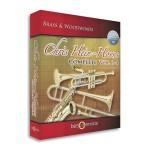 وی اس تی پلاگین بست سرویس Best Service Chris Hein Horns Complete