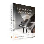 قیمت خرید فروش وی اس تی پلاگین ای اینسترومنت E-Instruments Session Keys Grand Y