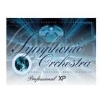 وی اس تی پلاگین  EW QL Symphonic Orchestra Platinum Woodwinds