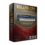 وی اس تی پلاگین رولند Roland GW8