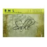 وی اس تی پلاگین  Spitfire Audio LLP BML Sable Strings Full